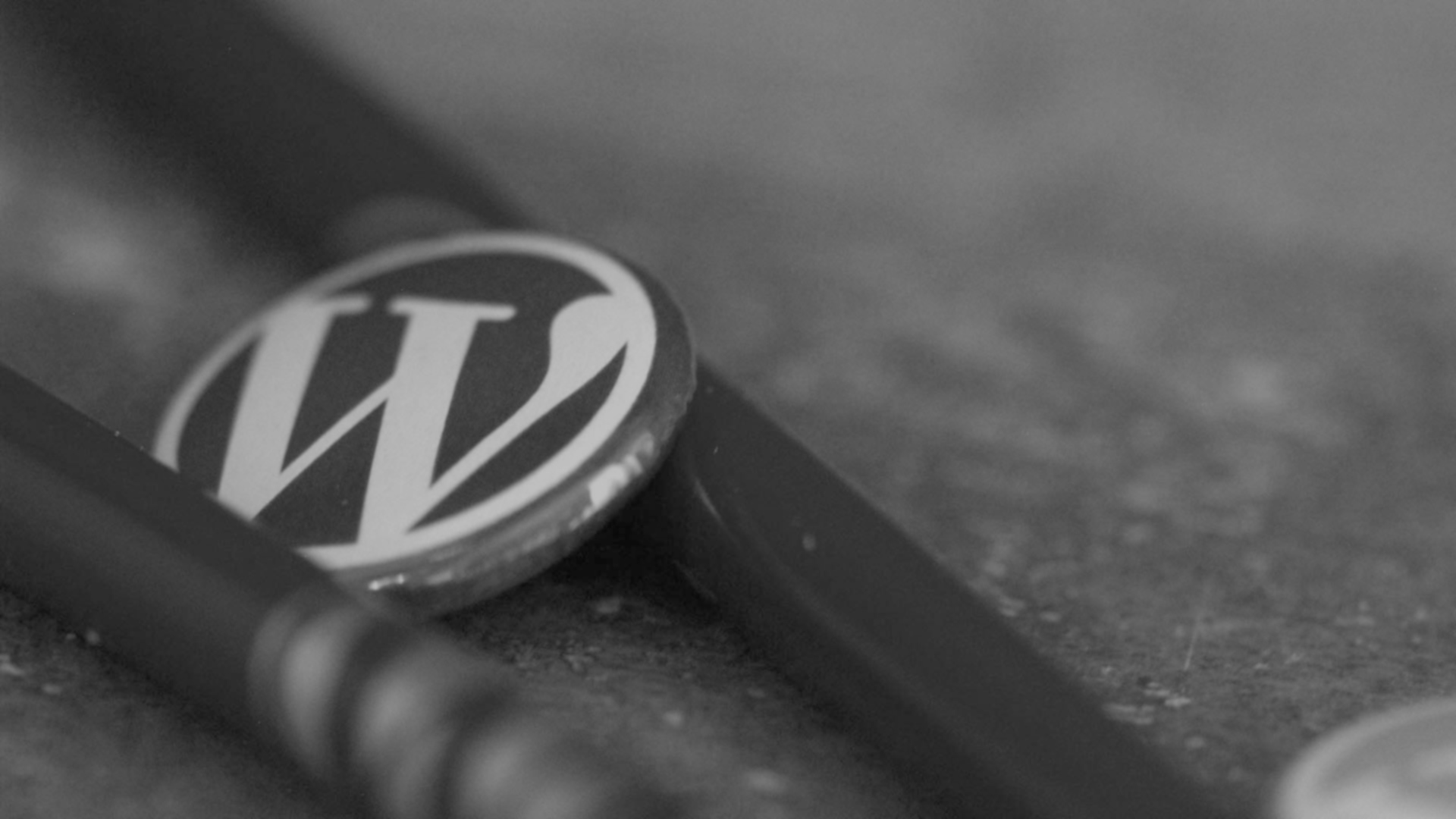 WORDPRESS: The Best CMS for Your Website