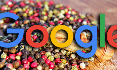 Google Search Algorithms Are Designed To Be Granular But Older Updates Were More Broad