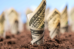 Dividend Investing: What You Need to Know