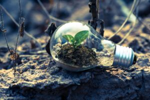 8 Dos and Don'ts of Sustainable Business Growth