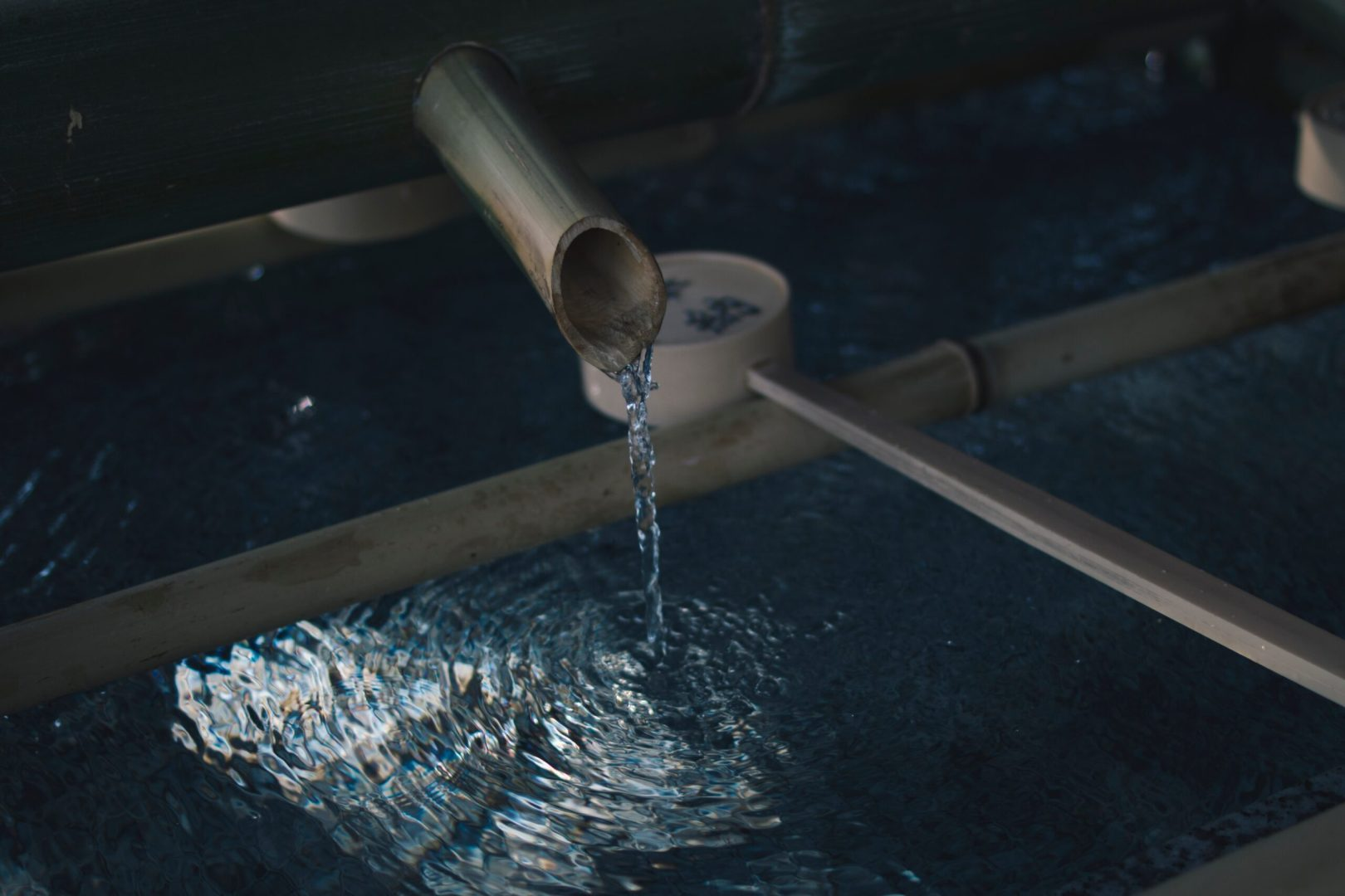 How Your Business Can Improve Its Water Usage