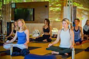 Yoga or Meditation Instructor