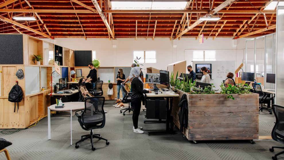 New Office Setup: What Humidity Should You Maintain For Employees