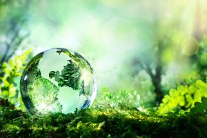 Why Going Green Is Never Too Late