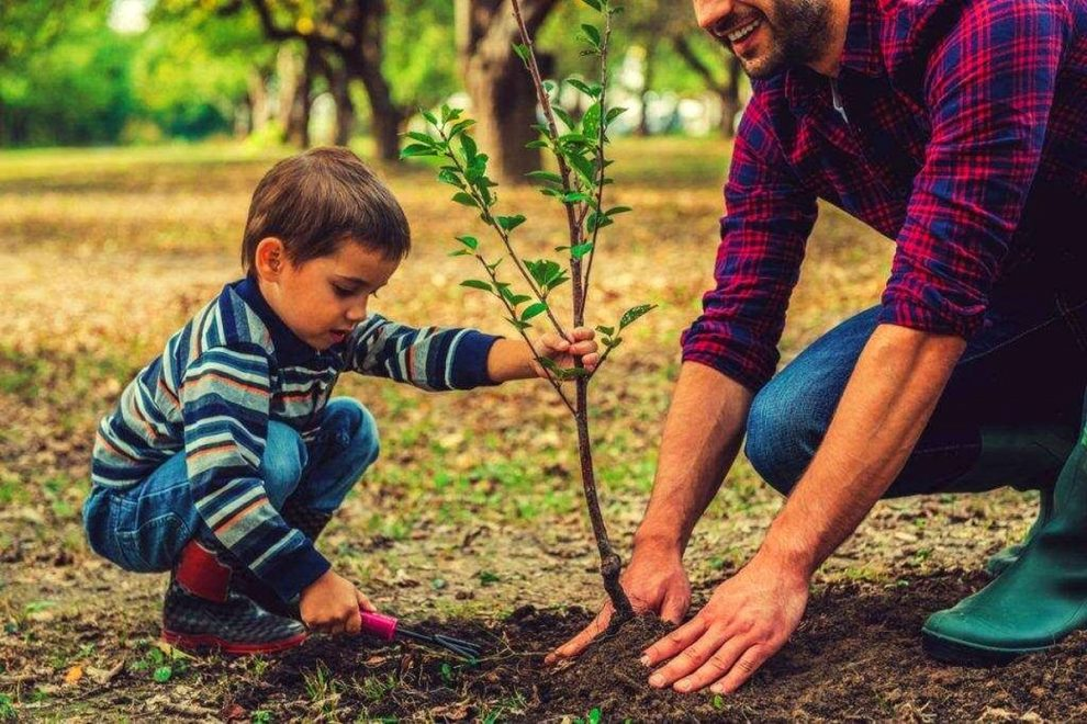 10 Easy Ways to Cultivate an Eco-Friendly Lifestyle