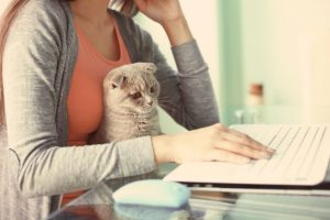 The True Cost of Pet Ownership